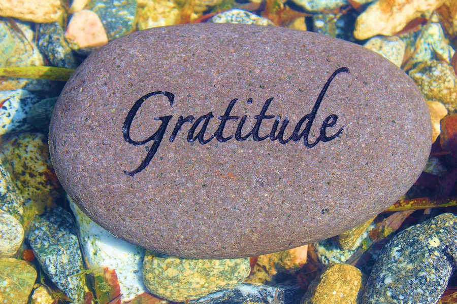 No Place Like Home Health, LLC: Grateful To Be Of Service