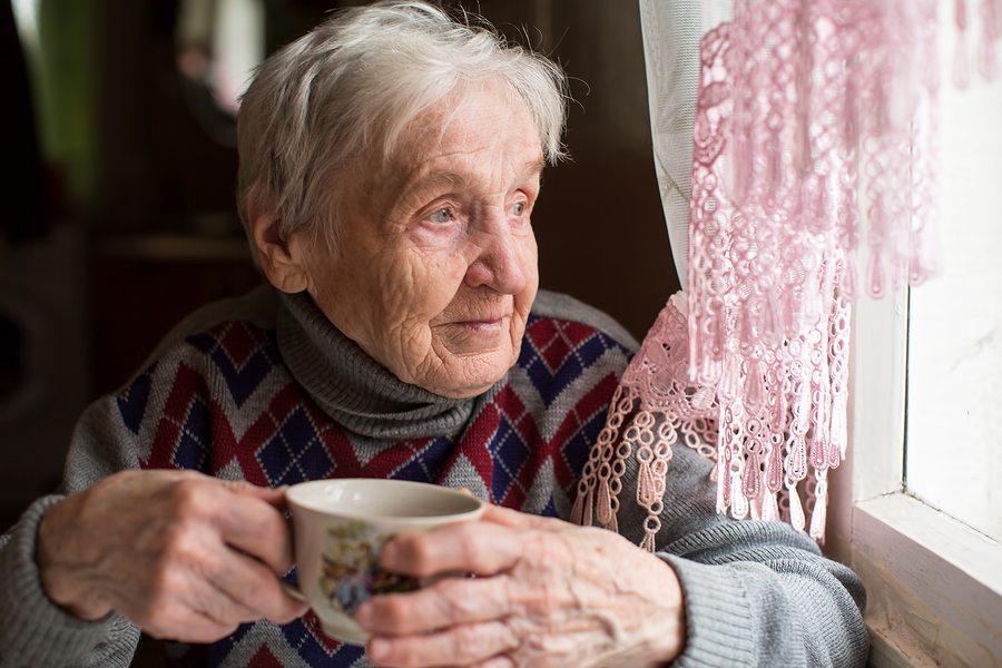 Elderly Care in Novi MI: Senior Appetite