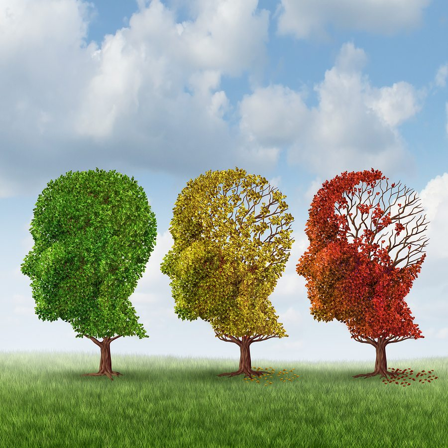 Homecare in Dearborn Heights MI: Cope with Memory Loss