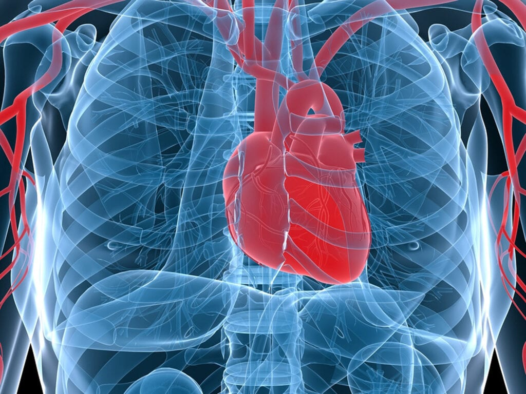 Homecare in Canton MI: Aspects of Heart Disease
